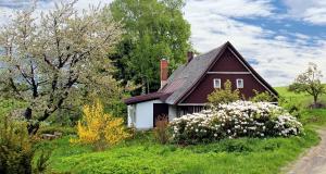Investir dans une tiny house en béton armé